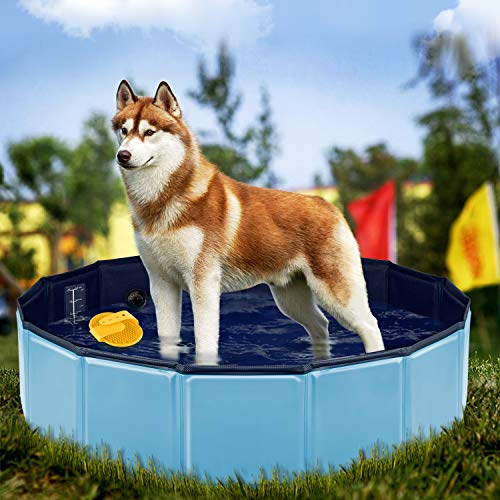 YAOBLUESEA Piscina para Perros, 80x20CM Piscina para Perros Piscina Plegable para Mascotas...