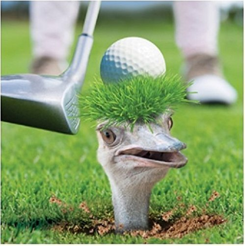 3D Holographic Golfing Ostrich Birthday Card Square Greeting Cards