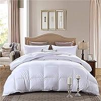 Downinner Queen Size Down Alternative Comforter
