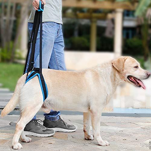 POPETPOP Arnés de Levantamiento de Perro para Mascotas Soporte ...