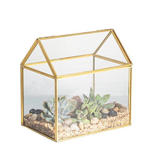 NCYP Geometrisches Terrarium, Haus-Form, Glas, schließbar, Gewächshäuschen für Sukkulenten/ Moos/ Farn, mit Klappdeckel