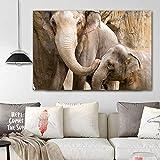 ganlanshu Pintura sin Marco Colorido Elefante Animal Cuadro Lienzo Pintura Arte de la Pared decoración Pintura de Sala de Estar Dormitorio ZGQ5792 50X70 cm