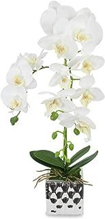 Dahlia Natural Looking Artificial Orchid Plant with Ceramic Pot Flower Arrangement - White