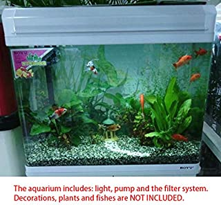 glass aquarium fish tank white color small BOYU elegance EA-60E for home and office