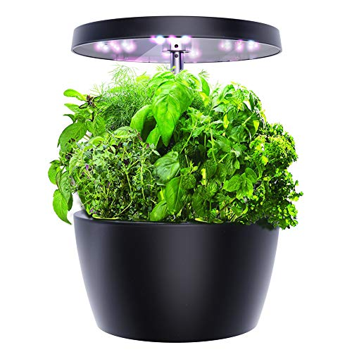 Smart Garden, Hydroponics Growing System with LED...