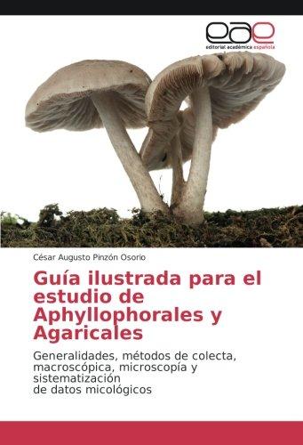 Guía ilustrada para el estudio de Aphyllophorales y Agaricales: Generalidades, métodos de colecta, macroscópica, microscopía y sistematización de datos micológicos