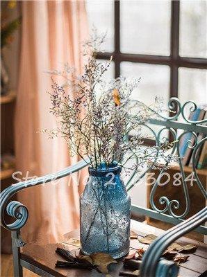 Multi Color Herbe Saint Valentin Graine jardin vivace Fleur Bonsai graines Plantes Blooming intérieur Plantes exotiques pots de fleurs 50Pcs 20
