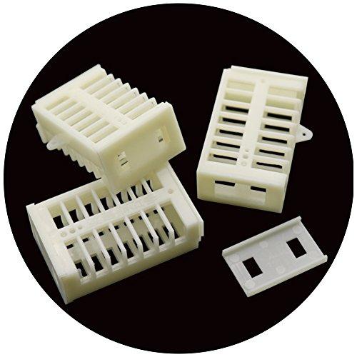 Adhere To Fly Lot de 20 boîtes multifonctions en plastique pour abeilles