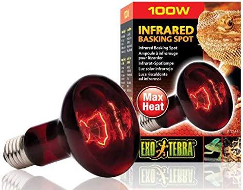 Exo Terra Infrared Basking Spot Infrarot-Spotlampe 100W