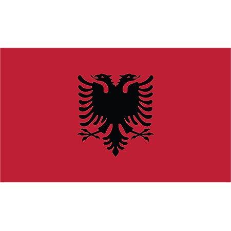 "ALBANIA ALBANIAN EAGLE OUTLINE FLAG WINDOW LARGE DECAL STICKER 12/""h x 11/""w"