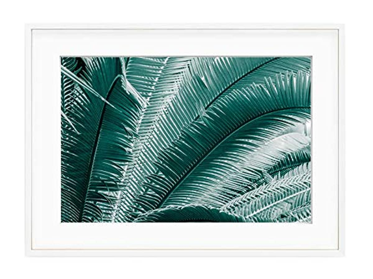 Blue Fin with White Lacquer Wooden Frame and Mount, Multicolored, 30x40