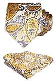 HISDERN Extra largo Floral Paisley lazo del panuelo Hombres Corbata & Plaza de bolsillo Conjunto Amarillo/gris