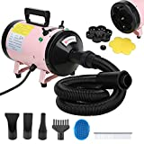 Voilamart 2800W Pet Dryer Low Noise Motorcycle Dryer Dog Grooming Blaster with 2