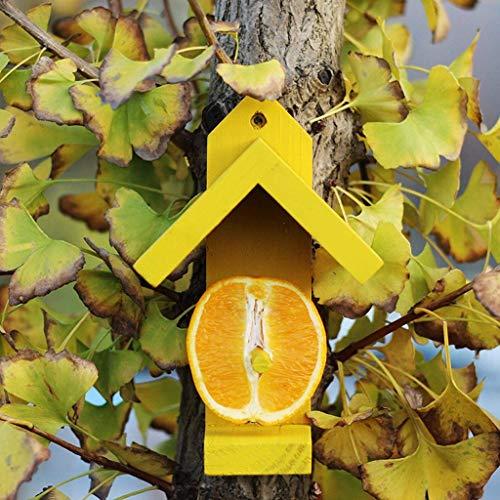 LUNAH Fruit Feeding Bird Pavilion Bird Watching Bird Feeder, Room Appearance Bird Garden Decoration,Bird Feeder With Wall Bracket (Color : Blue)