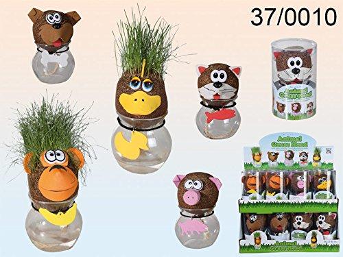 Graskopf auf Vase mit lustigen Tierköpfen Blumenvase Tischdekoration 4 Stück Set