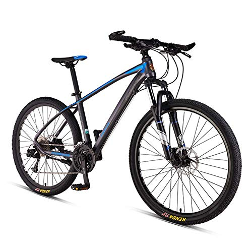 Unbekannt Mountain Bikes, Aluminium 33 Geschwindigkeit Mountainbike, Hardtail Mountainbike Mit Doppelscheibenbremse, Pendler Bike,Spoke Gray,26in