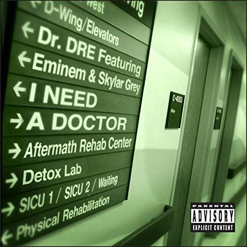 Dr. Dre feat. Eminem & Skylar Grey