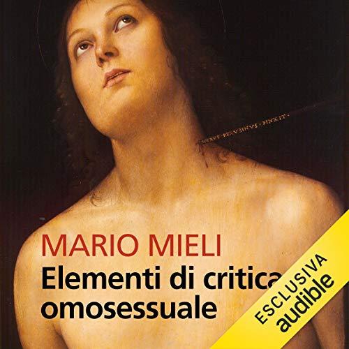 Elementi di critica omosessuale copertina