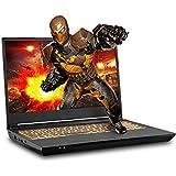 Sager NP7958F1 15.6-Inch FHD 144Hz, 72% NTSC Gaming Laptop, AMD Ryzen 9 3900, RTX 2070 8GB, 32GB 3200 RAM, 1TB NVMe SSD, Windows 10
