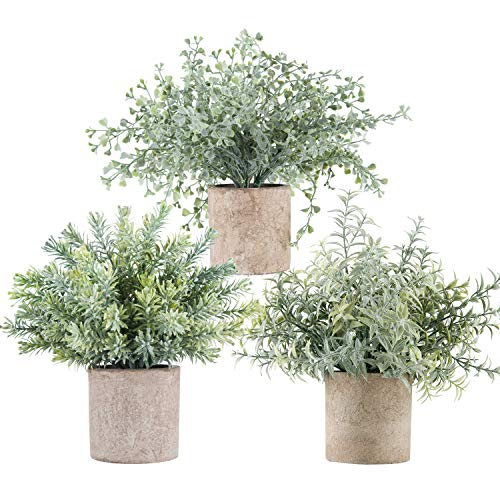 Der Rose 3 Pack Mini Potted Fake Plants Artificial Small Eucalyptus Plants for Home Office Desk Room Decoration