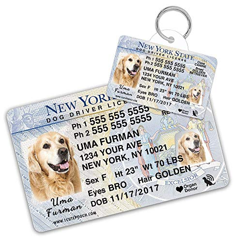 New York Driver License Custom Dog Tag for Pets and Wallet Card - Personalized Pet ID Tags - Dog Tags for Dogs - Dog ID Tag - Personalized Dog ID Tags - Cat ID Tags - Pet ID Tags for Cats