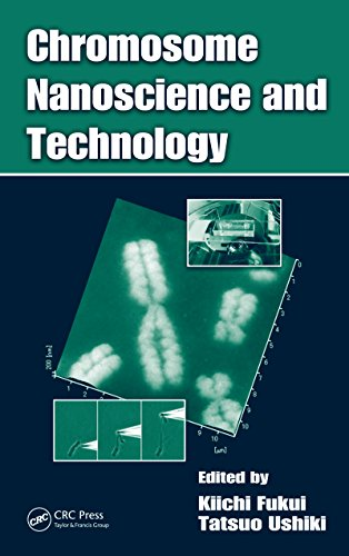 Chromosome Nanoscience and Technology (English Edition)