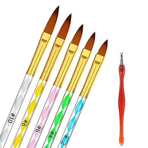 Hanyousheng 5pcs Pincel Uñas de Brochas de Uñas Gel Acrílico Carving Pen Pincel Líquido Polvo DIYJuego de 5 Pinceles de Uñas de Gel UV con Diseño de Acrílico nº 10.8.6.4.2