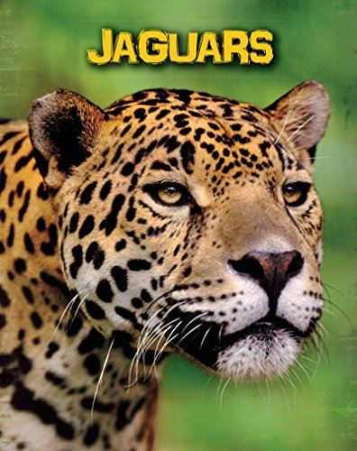 Jaguars (Living in the Wild: Big Cats)