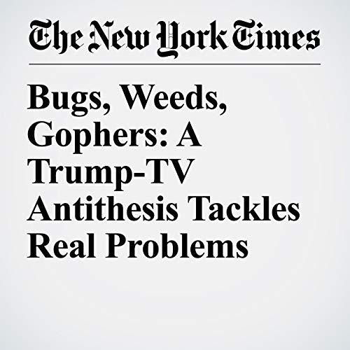Bugs, Weeds, Gophers: A Trump-TV Antithesis Tackles Real Problems copertina