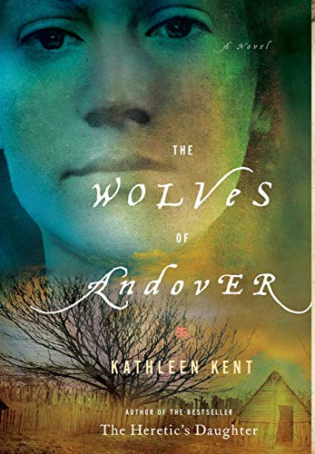 Image of The Wolves of Andover: A Novel