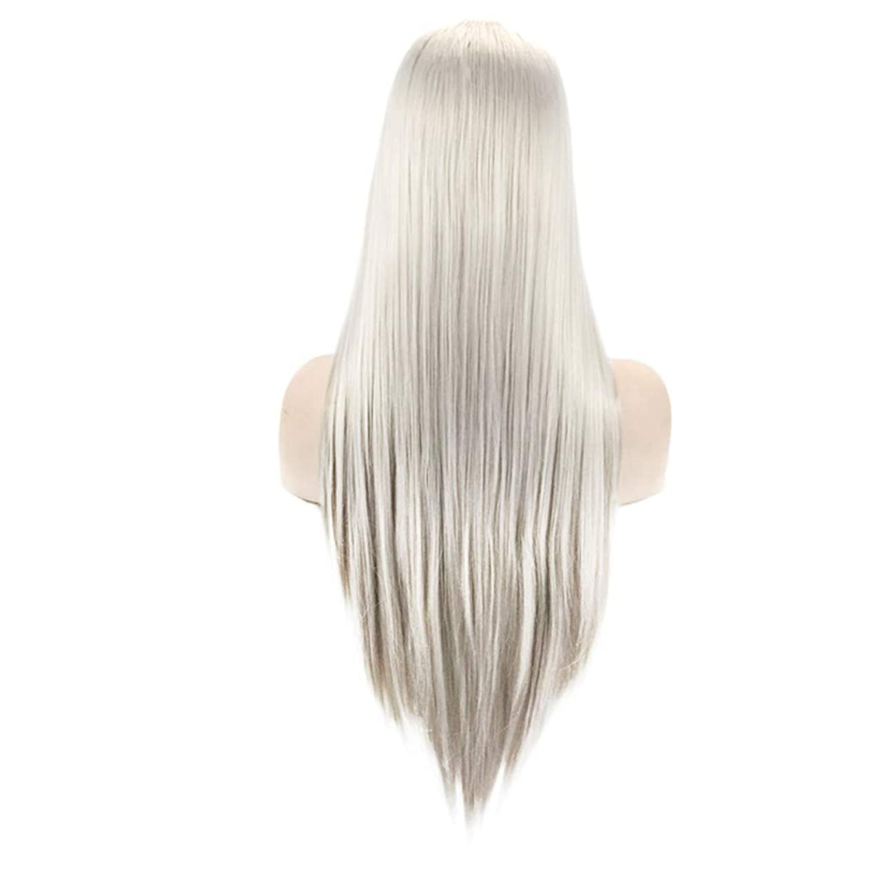 ASTV Fashion 24Inches Synthetic Wig Silver Straight Wigs Hair for Women Natural Lace Front Wig For Girls Fashion Soft Satin Hair Bun for Theme Parties, Concerts, Weddings, Dating