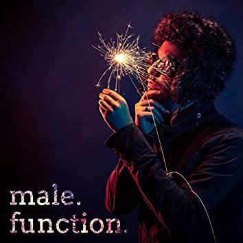 Malefunction