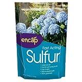 Encap Fast Acting Sulfur