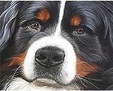 JiaHM Pintura de Perro Negro por número 40x50cm-No Contiene Cuadros de Pintura de Marco