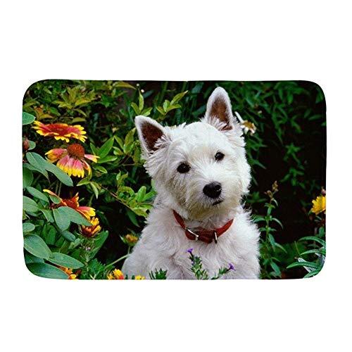 HUGS IDEA Westie Florals - Felpudo, diseño de perro con estampado de flores, antideslizante, alfombra de baño, cocina, interior y exterior, Franela, Music 1, 40x59 cm
