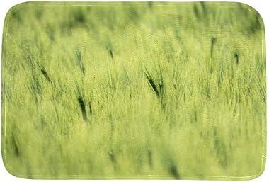 EGGDIOQ Doormats Green Barley Cereals Custom Print Bathroom Mat Waterproof Fabric Kitchen Entrance Rug, 23.6 x 15.7in