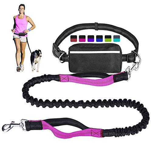 Walking Leash