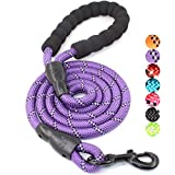 BAAPET 4/5/6 FT Strong Dog Leash with Comfortable Padded Handle and Highly Reflective Threads for Small Medium and Large Dogs (5FT-1/2'', Purple)