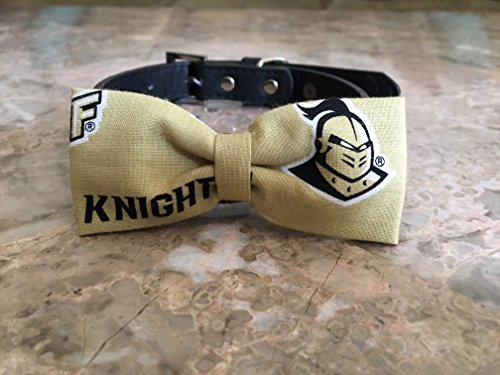 UCF Dog Bow Tie