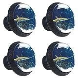 ATOMO 4 pomos para cajón de cristal de tiburón pequeño de 30 mm para acuario, tirador Usd para armario, cajón