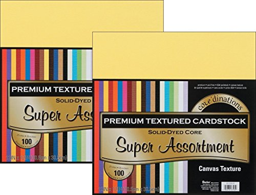 Scrapbooking Supplies Coredinations Cardstock Craft Paper