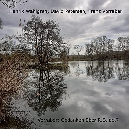 Henrik Wahlgren, David Petersen & Franz Vorraber