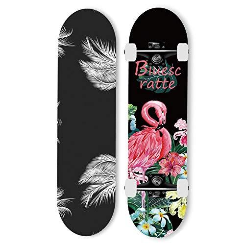 gnitoaim professional complete skateboard 7