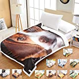 i-baby Home Sherpa Throw Blanket Digital Printing Reversible Super Soft Lightweight Blanket Warm Microfiber All Season Blanket for Bed or Couch (50'x67', Puppy)