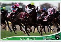 オーナーズホース/OWNERS HORSE【レオアクティブ】OH02-H045