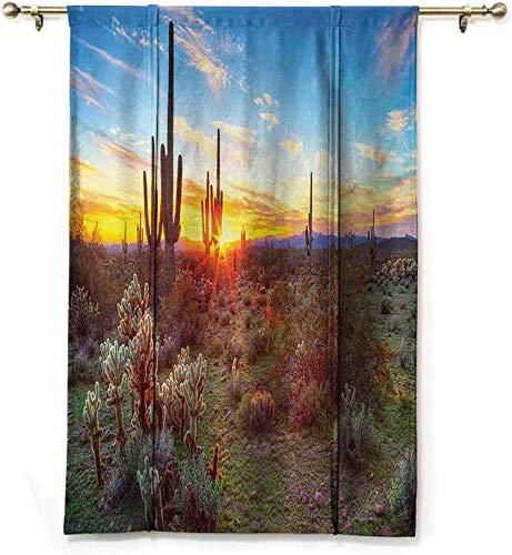 Rolgordijnen uit de collectie Cactus Del Saguaro Saguaros Campo-bloemen in Deserto Di Sonora Scena fotodruk blauw geel oranje olijf, 122 x H183 cm / 48 x 72 inch