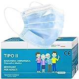 50 Mascherine MADE IN ITALY Tipo II Protezione Viso Certificate CE in 5 Pacchetti da 10 Pezzi (Azzurro)