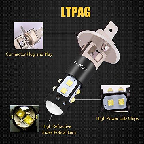 LTPAG H1