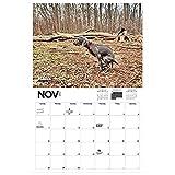 fllyingu Pooping Pooches 2021 Calendario De Pared para Regalos De Mordaza De Elefante Blanco, Enero De 2021-diciembre De 2021, 11'x 17' (Abierto), 11'x 8.5' (Cerrado)