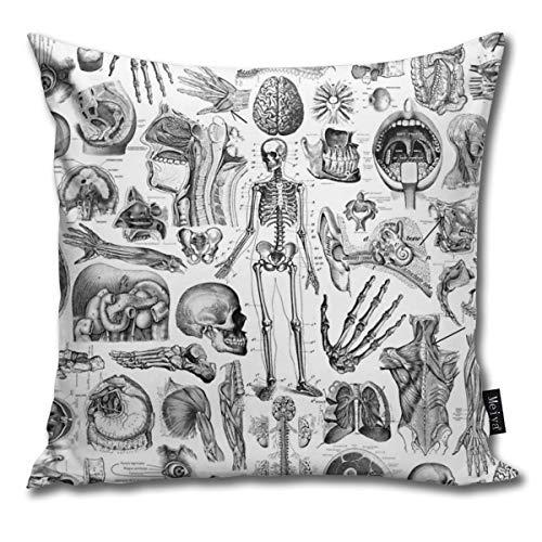 BwwoBing Throw Pillow Cover Case voor slaapbank, sofa, woondecoratie, vintage, menselijk anatomy wit bedrukt patroon vierkant 18 x 18 inch 45 x 45 cm